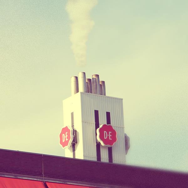 DE-witte-rook