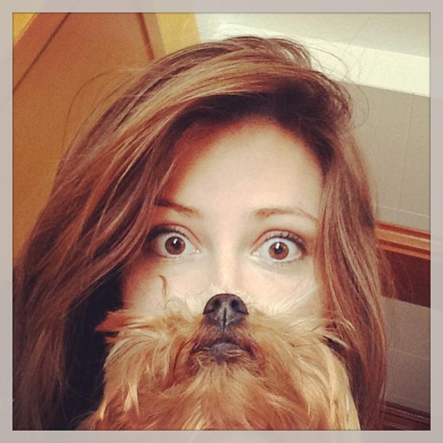 dogbeards2