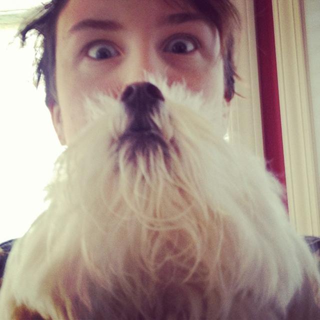 dogbeards5