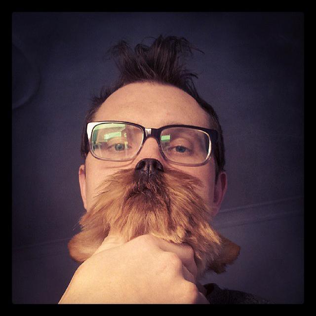 dogbeards6